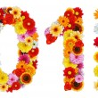 Stock Photo: Numbers 0 and 1 made of various flowers