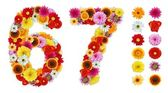 Numbers 6 and 7 made of various flowers — Stock Photo
