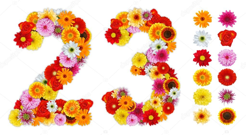 Numbers 2 And 3 Made Of Various Flowers  U2014 Stock Photo  U00a9 Erierika  7390412