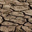 Cracked lifeless soil — Stock Photo