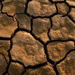 Cracked lifeless soil - Stock Photo