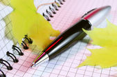 Pen and notepad — Stock Photo