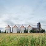 Biofuel factory — Stock Photo #7426724