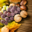 Set of autumn fruit — Stock Photo #6923051