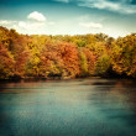 Lake nature landscape — Stock Photo
