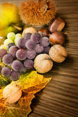 Set of autumn fruit — Stock Photo