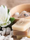 天然肥皂 — 图库照片