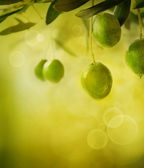 Olives design background — Stock Photo