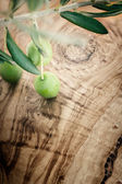 Olive branch on olive wood background — Stock Photo