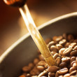 Coffee beans in the grinder — Stock Photo