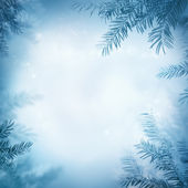 Festive winter background — Stock Photo