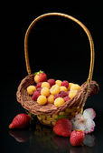 Pottle with berries — Stock Photo