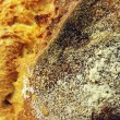 Bread crust macro — Stock Photo