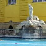 セーチェーニ浴場のスイマー — ストック写真