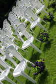 Chairs at a wedding reception — Stock Photo