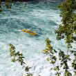 Stock Photo: Boat approaching Rhine Falls
