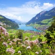 Lungern village in Switzerland — Stock Photo