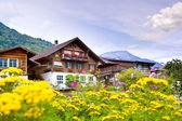 Aldeia de Brienz, Suíça — Fotografia Stock