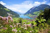 Lungern village in Switzerland — Stockfoto