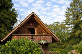 Swiss Wooden Cabin — 图库照片
