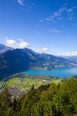 Wilderness Nature in Interlaken, Switzerland — Stock Photo