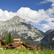 Grindelwald Village — Photo