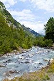 Blausee の小さい川 — ストック写真