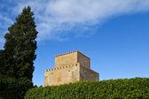 Ciudad Rodrigo Castle — Stock Photo