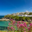 Cove and harbour of Port Isaac, Cornwall, England — Stock Photo #6841341