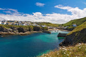 Cove and harbour of Port Isaac with white flowers, Cornwall, England — Stock Photo