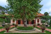 Chua Thien Vuong Pagoda with tree, Dalat, Vietnam — Stock Photo