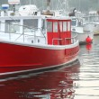 Fishing boats in harbor — Stock Photo #6980199