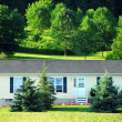 Small country house — Stock Photo #6980375