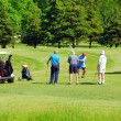 Stock Photo: Seniors golfing