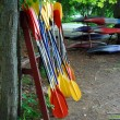 Stock Photo: Kayak paddles