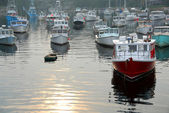 Fishing boats in harbor — Stock fotografie