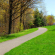 Path spring park — Stock Photo
