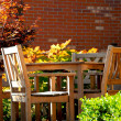 Patio — Stock Photo #7085054