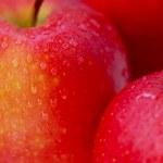 Red apples macro — Stock Photo