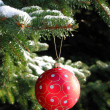 Stock Photo: Red Christmas ball on fir tree