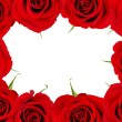 Red rose frame - Stock Photo