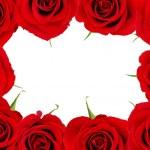 Red rose frame — Stock Photo #7085203