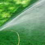 Sprinkler on lawn — Stock Photo