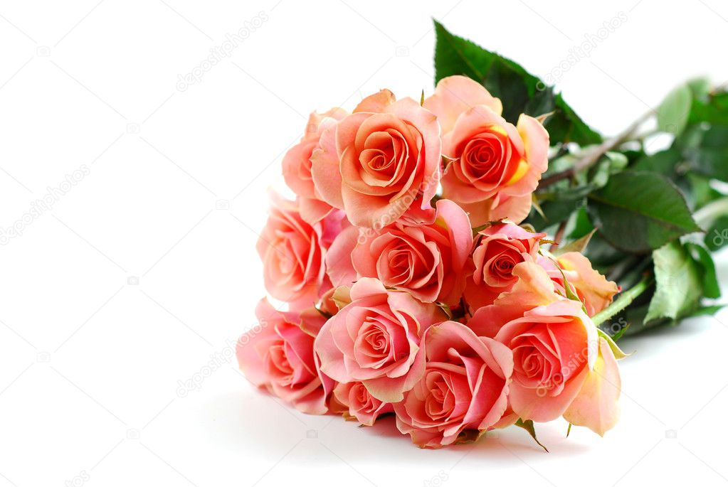 Bouquet of pink roses on white background — Stock Photo #7085083