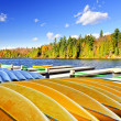 Stock Photo: Canoe rental on autumn lake