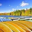 Canoe rental on autumn lake — Stock Photo