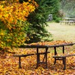 Stock Photo: Picnic table with autumn leaves