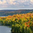 Stock Photo: Fall forest and lake