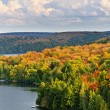 Fall forest and lake — Stock Photo #7611875