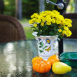 Stock Photo: Fall table with gourds and flowers